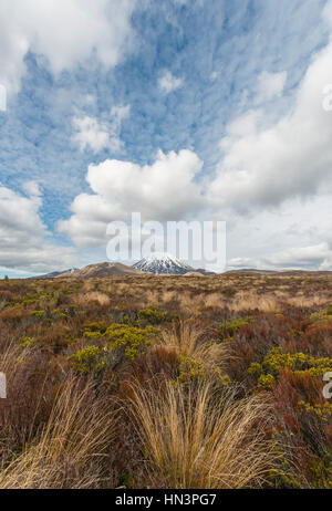 Volcano Mount Tongariro and Mount Ngauruhoe, Tongariro National Park, Southland, New Zealand - Stock Photo