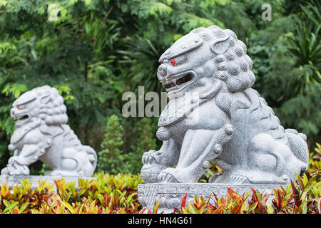 Lion stone in Chinese temple entrance. - Stock Photo