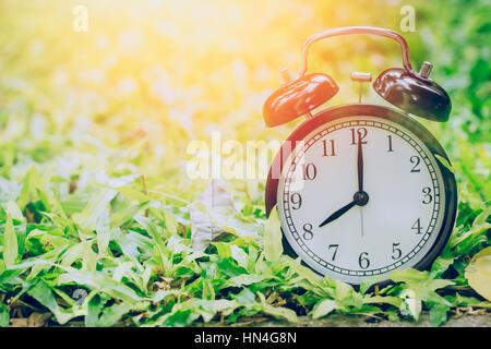8 o'clock retro clock in the garden grass field with sun light. - Stock Photo
