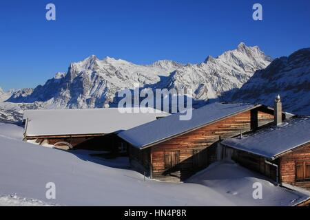 Snow covered mountains Finsteraarhorn and Schreckhorn. Weathered timber facades. Winter landscape in Grindelwald, - Stock Photo