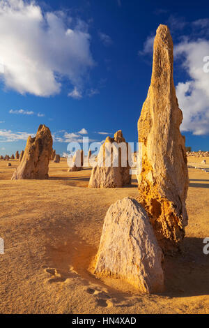 The Pinnacles Desert in the Nambung National Park, Western Australia. - Stock Photo