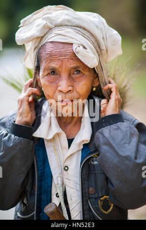 Elder woman in Laos working in field.