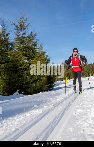 Cross-country skier in a scenic wintry landscape, Albrechtsplatz, Bad Berleburg, in Sauerland, North Rhine-Westphalia, - Stock Photo