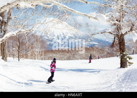 NISEKO, JAPAN - MARCH 10 : General view of people snowboarding on a tree-lined piste in the Niseko Grand Hirafu - Stock Photo