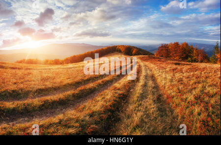 rock massif in the Carpathians. - Stock Photo