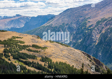 Aerial view of plains in the Rocky Mountains with scattered pine forests in Colorado - Stock Photo