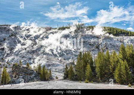 Roaring Mountain in Yellowstone National Park with hot springs and steam vents showing boiling water - Stock Photo