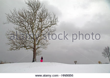 New York, USA. 9th Feb, 2017. A young girl sleds down a hill during a snow storm, Staten Island, New York, USA. - Stock Photo