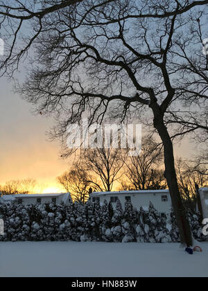 Merrick, New York, USA. 9th Feb, 2017. Sunset casts golden glow on snowy landscape in suburban Long Island home - Stock Photo