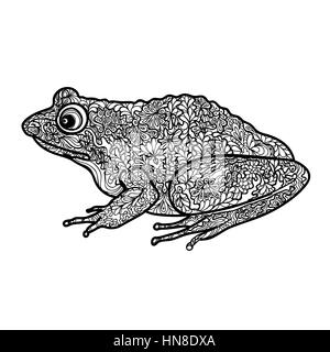 Frog isolated. Black and white ornamental doodle frog illustration with zentangle decorative ornament - Stock Photo