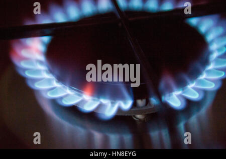Gas hob cooker flame alight cost of energy UK - Stock Photo