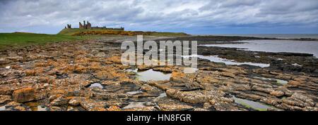 Summer blue skies, Dunstanburgh Castle, North Northumbrian Coast, Northumbria County, England, UK