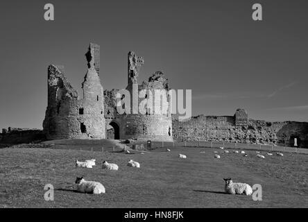 Summer skies, Dunstanburgh Castle, North Northumbrian Coast, Northumbria County, England, UK