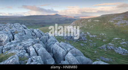 Whernside hill one of the famous Three Peaks viewed at sunset from Ravens Scar Limestone Pavement near White Scars, - Stock Photo