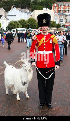 Llandudno, Wales - July 10, 2011: A Royal Welch Fusilier holding Kashmir goat William Windsor aka Billy, retired - Stock Photo