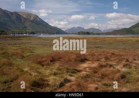 Loch Leven at Glen coe, highland, scotland, uk with large meadow. - Stock Photo