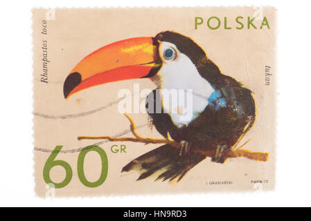 POLAND - CIRCA 1972: A stamp printed in  shows toucan, ser - Stock Photo