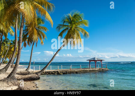 beach of Plage de la Caravelle in Guadeloupe - Stock Photo