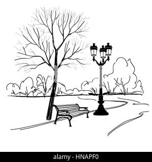 Bench in park with tree and streetlamp. City park landscape. Vector hand drawn sketch. - Stock Photo