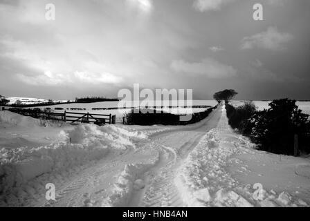 Black and White Landscape - heavy snowfall in Berwickshire, Scotland - Stock Photo