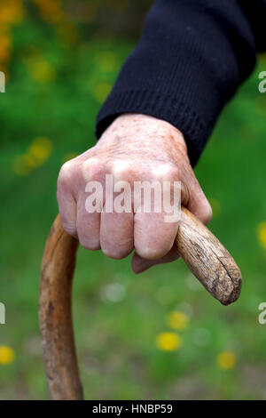 Close up of wrinkled hands holding a cane - Stock Photo