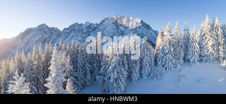 Winter landscape in the Austrian Alps near Salzburg, Bavaria, Austria - Stock Photo
