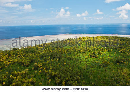 Aerial view of coral reefs and palm tree forests at Millennium Atoll. - Stock Photo