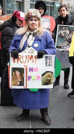 New York, NY, USA. 11th Feb, 2017. Anti-fur protester holding a Trump-related sign featuring Melania Trump wearing - Stock Photo