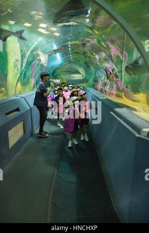 Chiang Mai, Thailand - Sepember 7, 2016: people watching fishes and having fun together on a day trip at Chiang - Stock Photo