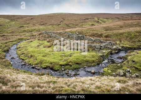 Sargill Fold, a derelict washfold on Stags Fell, Yorkshire Dales, formerly used for washing sheep. Located on unenclosed - Stock Photo
