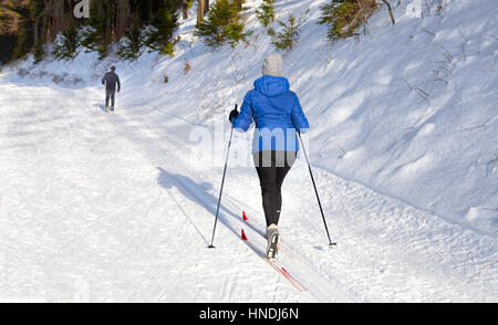 Female cross-country skier on The 'Lennetal-Loipe' in the nature reserve of the Lennetal, Westfeld/ Ohlenbach, Sauerland, - Stock Photo