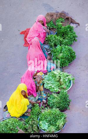 Laxmi market,pushkar, Rajasthan, india - Stock Photo