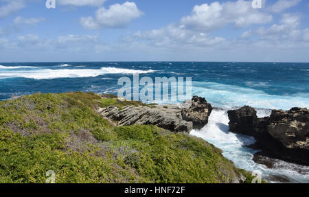Green dunes with rugged limestone formations along the Indian Ocean coast at Cape Vlamingh at Rottnest Island in - Stock Photo