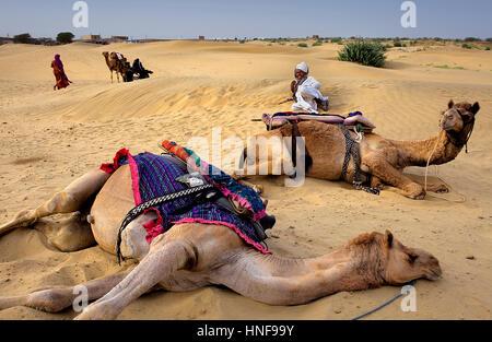 Scene in Sam dunes, Desert National Park in the Great Thar Desert,near Jaisalmer, Rajasthan, India - Stock Photo