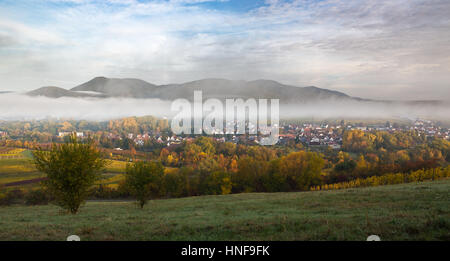Wine village in the morning, Pfalz, Germany - Stock Photo