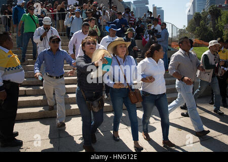 Mexico City, Mexico. 12th February 2017. Isabel Miranda de Wallace, President of the anti-kidnapping association - Stock Photo