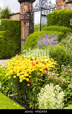Summer perennial garden with flowers topiary curved hedge - The well tended perennial garden ...