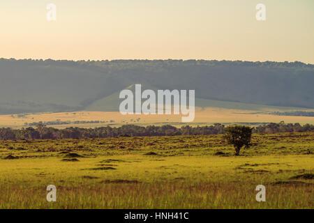 Scenic African savannah landscape in Masai Mara, Kenya - Stock Photo
