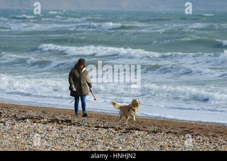 Weymouth Dorset, UK. 13th Feb, 2017. UK Weather. A dog walker on the beach at Weymouth in Dorset under hazy sunshine - Stock Photo