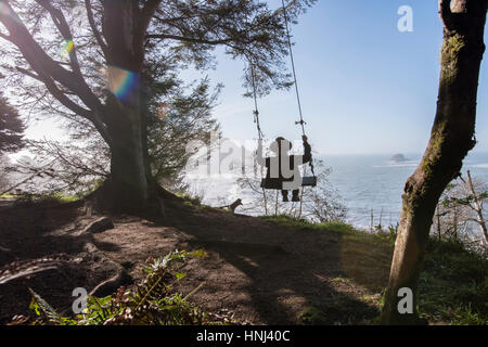 Rear view of man swinging by tree against sea on sunny day - Stock Photo