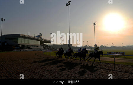 Runners and Riders round the first bend of The Betway Handicap at Wolverhampton Racecourse. - Stock Photo