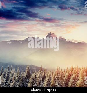 Winter landscape glowing by sunlight. Dramatic wintry scene. - Stock Photo