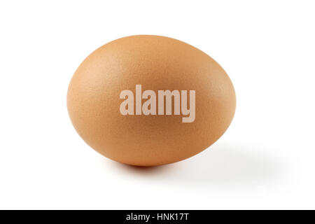 Photo of a single brown egg isolated on a white background.  Slight extended shadow to the right is visible.  Clipping - Stock Photo
