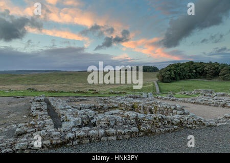 Hadrian's Wall, Housesteads Roman Fort: the view across the remains of a Barrack building (Barrack 13) looking north - Stock Photo