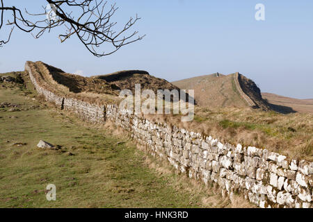 Hadrian's Wall: the view to the west along Housesteads Crags and Cuddy's Crags, seen from the edge of the wood a - Stock Photo
