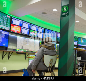 Woman looking at screens in Paddy Power Betting shop. UK - Stock Photo
