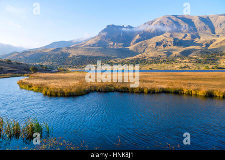 Lake with reed - Stock Photo