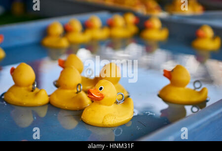 Many yellow rubber ducks floating on a large tray of water - Stock Photo