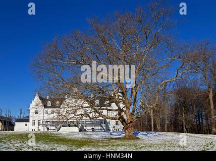 Kokkedal Castle Copenhagen, a luxurious castle hotel in winter landscape, a big, old leafless tree in front. Kokkedal - Stock Photo