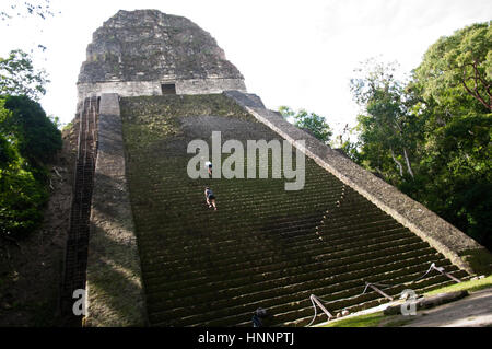 Tikal, Guatemala - Stock Photo